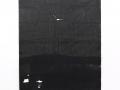17.22.205 - 2017 - Tusche, Papier - 205,5 x 125 cm
